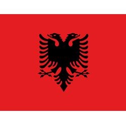 ethics group - albanie